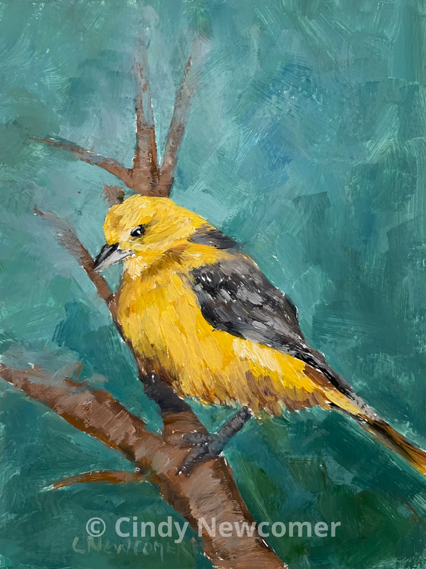 oil painting, Bird art, Yellow, Baltimore Oriole